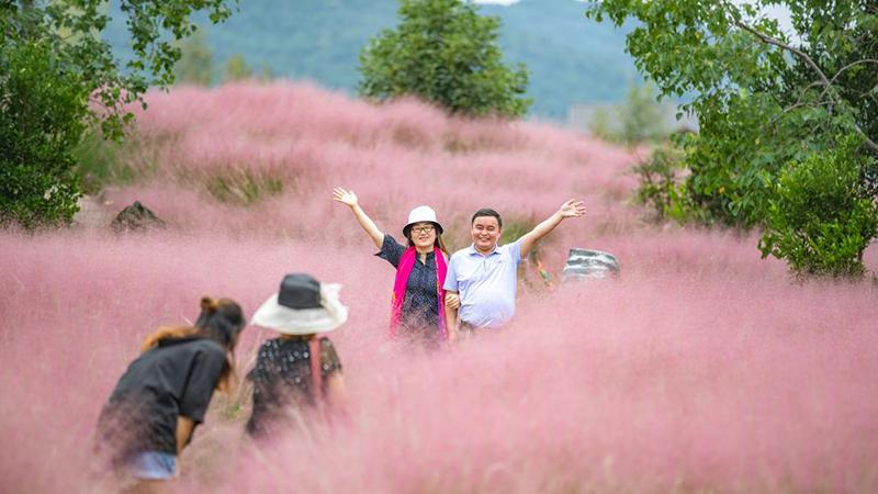 荒地が花いっぱいの人気観光地に 重慶市酉陽