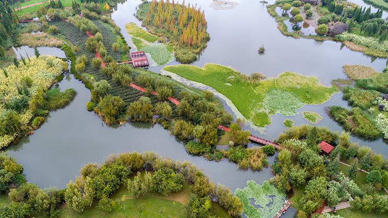 COP15開催で整備された濕地が一般公開 雲南省昆明市